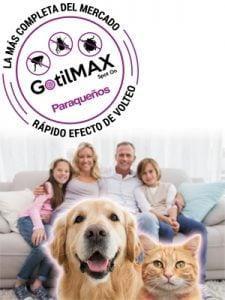pets-family