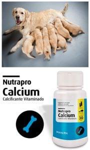 calcium-draw